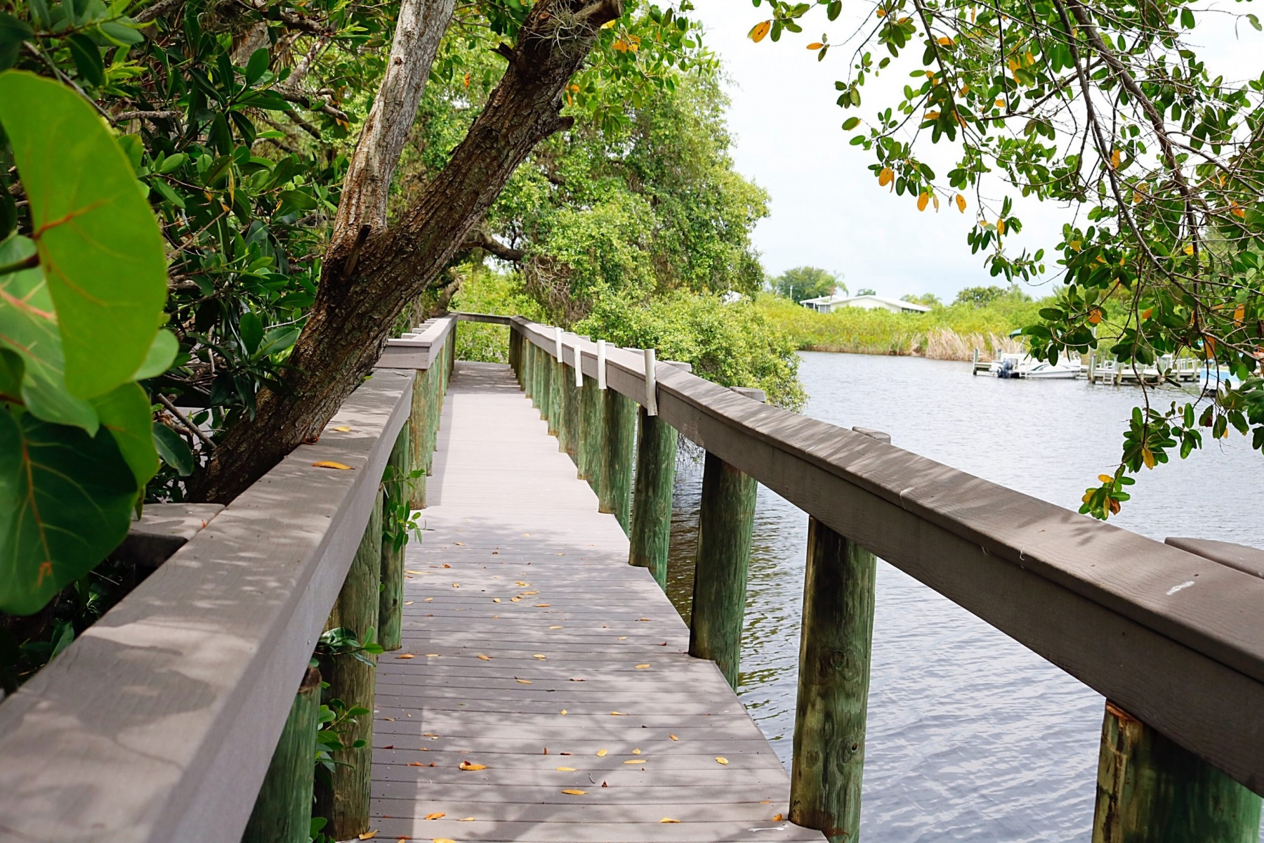 Riverwalk-boardwalk-along-water-scaled